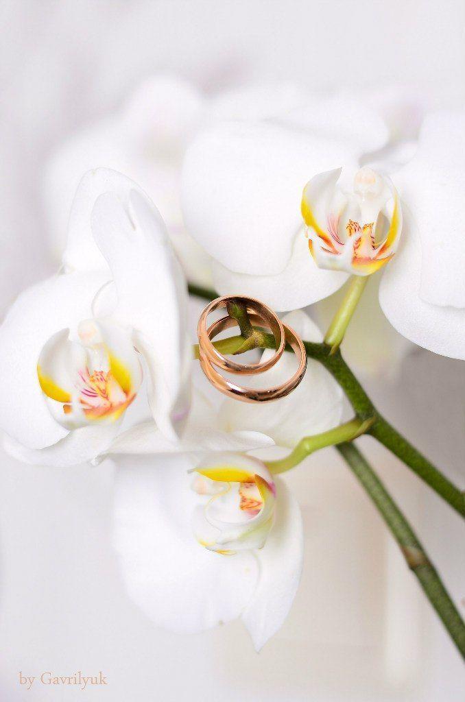 Фото 8386858 в коллекции Wedding - Фотограф Юлия Гаврилюк
