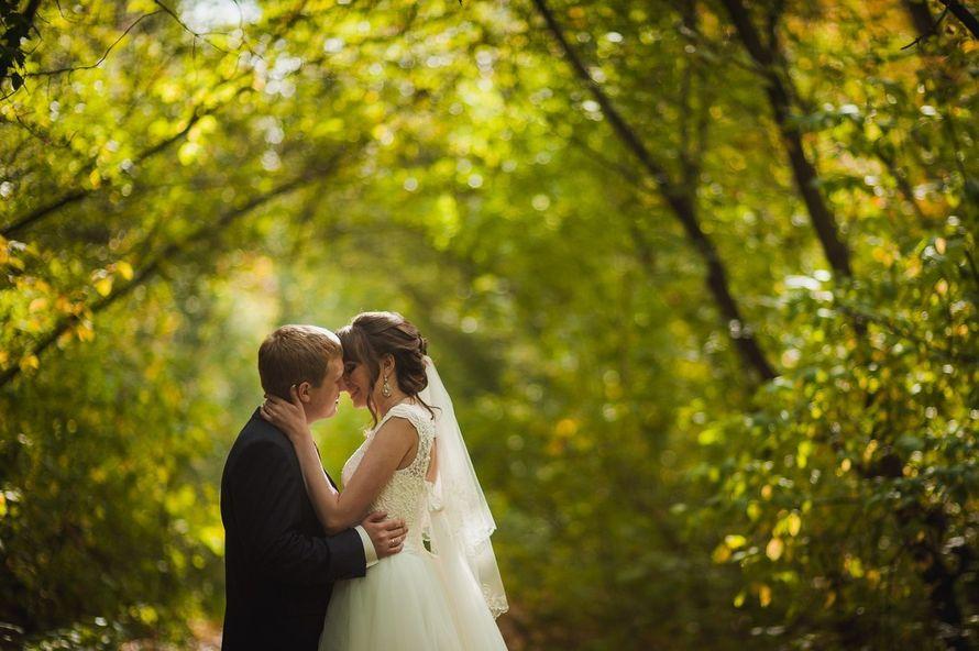 Фото 14167312 в коллекции Яркая, веселая,красивая свадьба, как и сами молодожены! - Оформитель Юля Ярышева