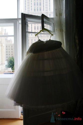 Фото 19812 в коллекции Свадебная фотосессия Ники - Свадебный фотограф Татьяна Кузнецова
