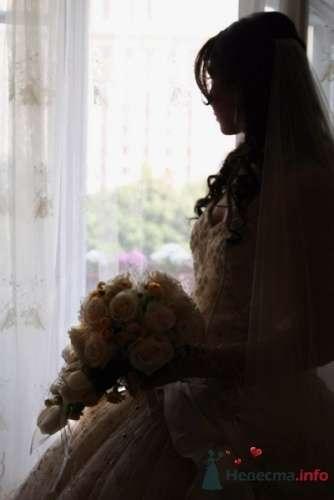 Фото 19819 в коллекции Свадебная фотосессия Ники - Свадебный фотограф Татьяна Кузнецова