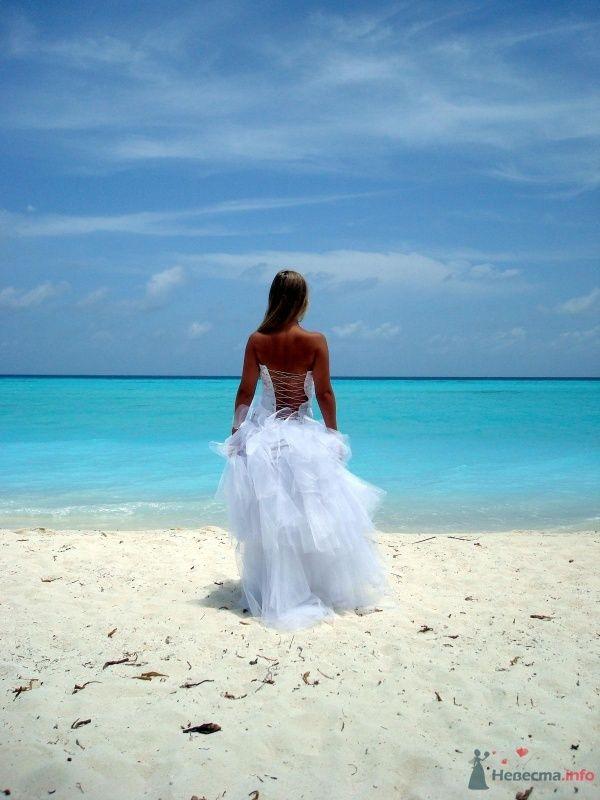 На лазурном побережье океана стоит невеста в белоснежном платье с открытой спиной и пышной юбкой, ее волосы распущены, взор - фото 53979 Dorogysha
