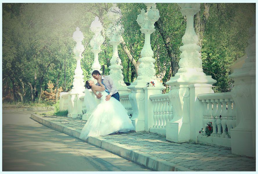 Фото 5976919 в коллекции портфолио - Фотограф Анастасия Драгункина