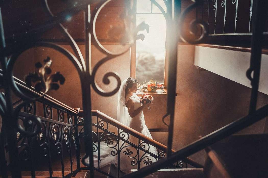 Фото 11069450 в коллекции Портфолио - Фотограф Анна Гурова