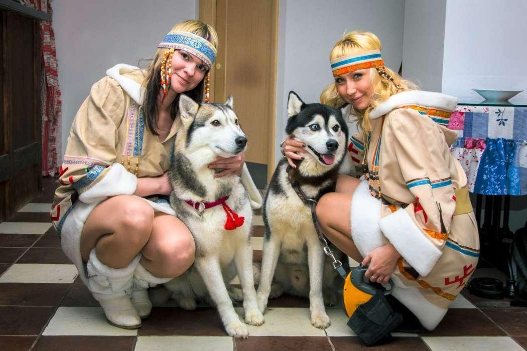 Фото 5474751 в коллекции Фото сессия с собаками - Праздничное агенство Event Art