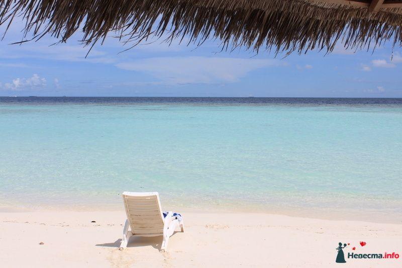 Фото 104326 в коллекции Мальдивы  -  идеальное место для медового месяца. - barbie