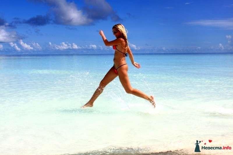 Фото 104855 в коллекции Мальдивы  -  идеальное место для медового месяца. - barbie