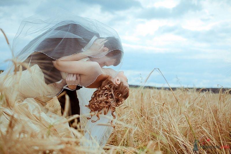 Жених целует невесту посреди пшеничного поля - фото 56982 Невеста01