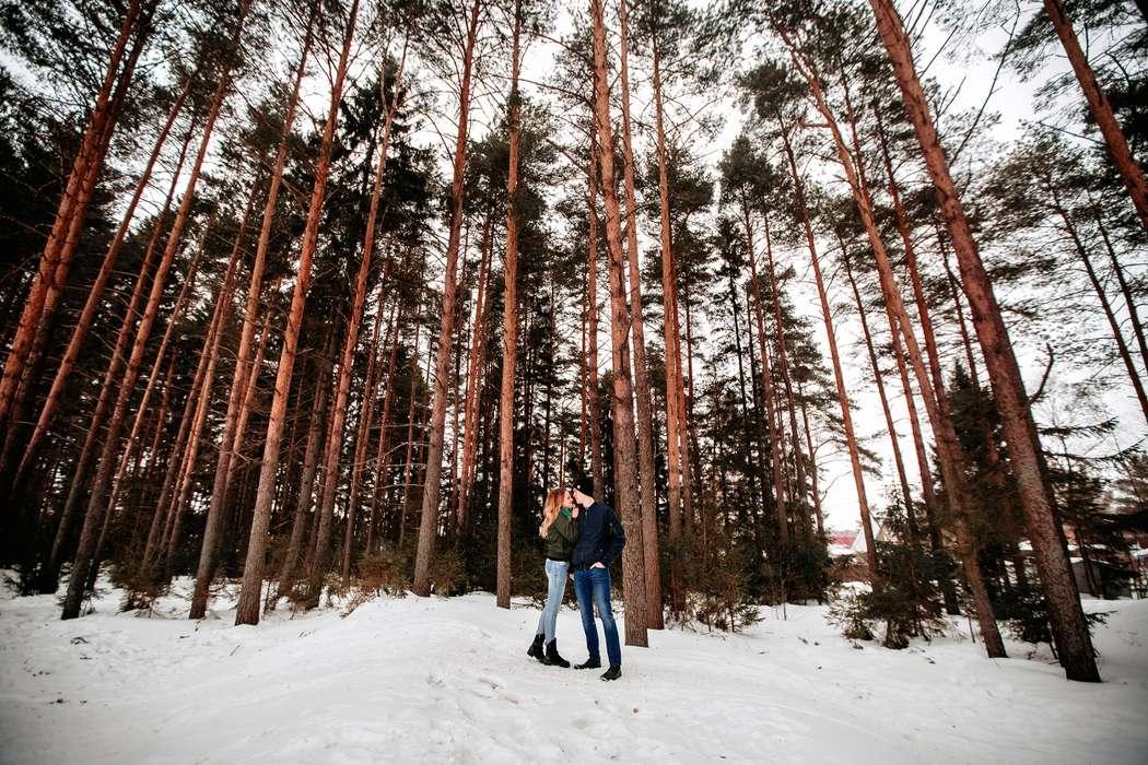Фото 17516532 в коллекции Портфолио - Фотограф Дмитрий Паутов