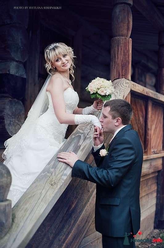 Фото 480004 в коллекции Свадьба от Светланы Сушинских - ЛиОНа - ведущая Лия Батюченко & DJ Надежда