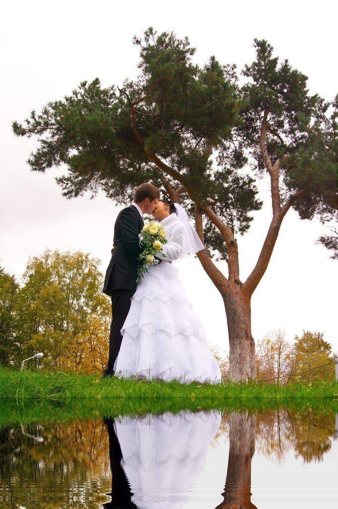 Фото 7874642 в коллекции свадьбы 2011 г. - Видеограф Анатолий Рощин