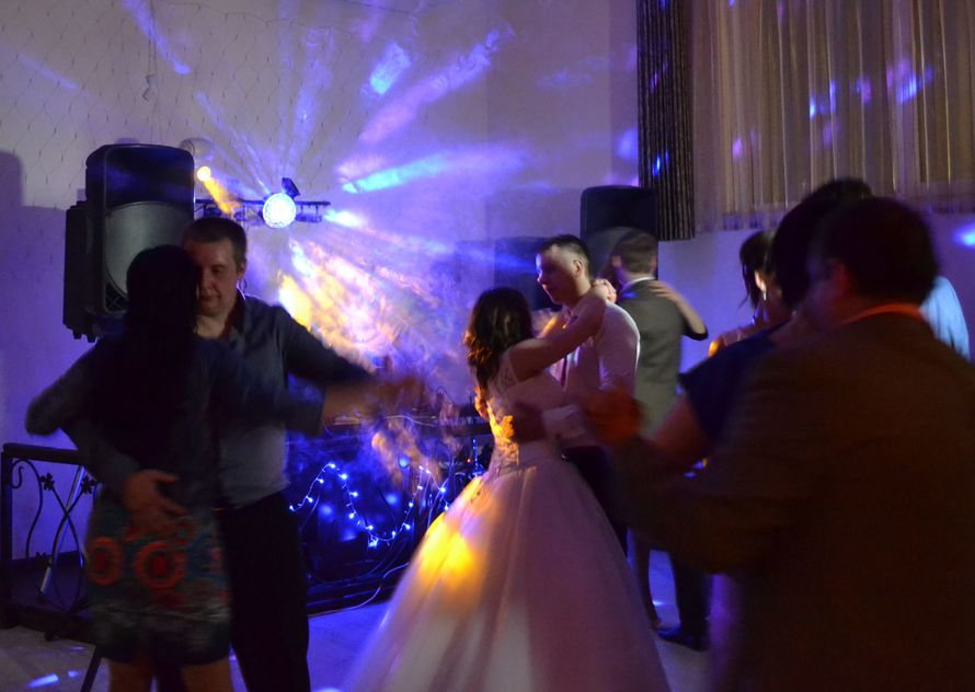 23 января 2016г. Свадьба Оксаны и Алексея в ресторане Прага - фото 8681832 DJ Влад Добрый