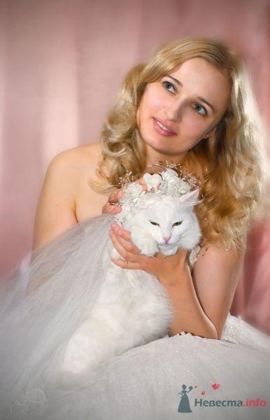 """Фото 44648 в коллекции разное) (для """"пообщаться на форуме"""") - Невеста01"""