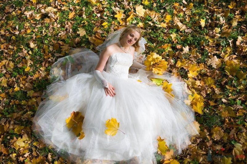 """Фото 65811 в коллекции разное) (для """"пообщаться на форуме"""") - Невеста01"""