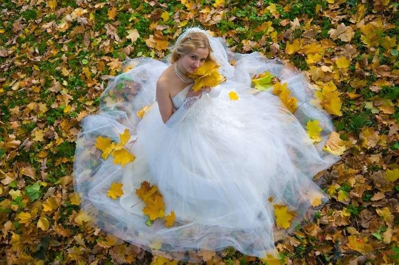 """Фото 65813 в коллекции разное) (для """"пообщаться на форуме"""") - Невеста01"""