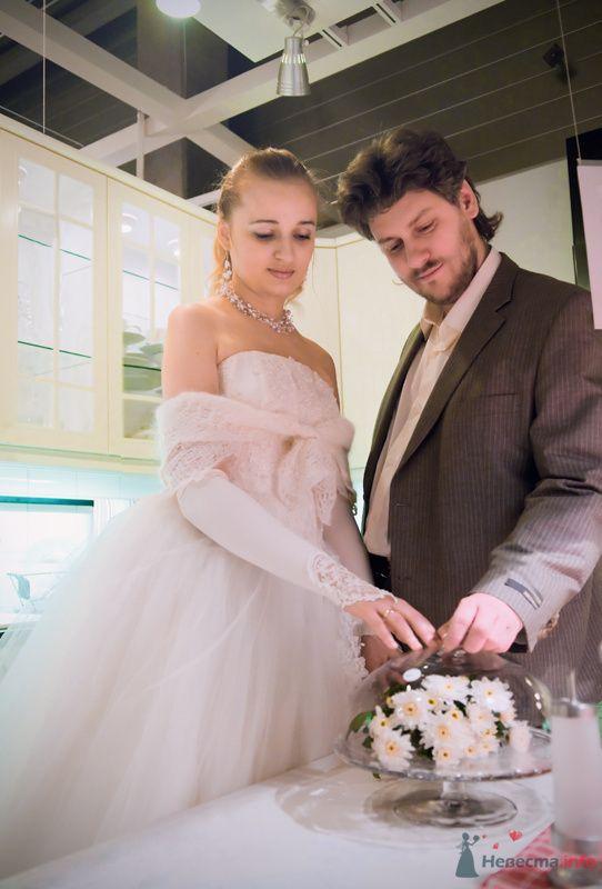 """Фото 72713 в коллекции разное) (для """"пообщаться на форуме"""") - Невеста01"""