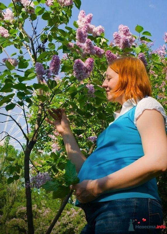 Фото 106181 в коллекции Катюша (фотосессия беременной) - Невеста01