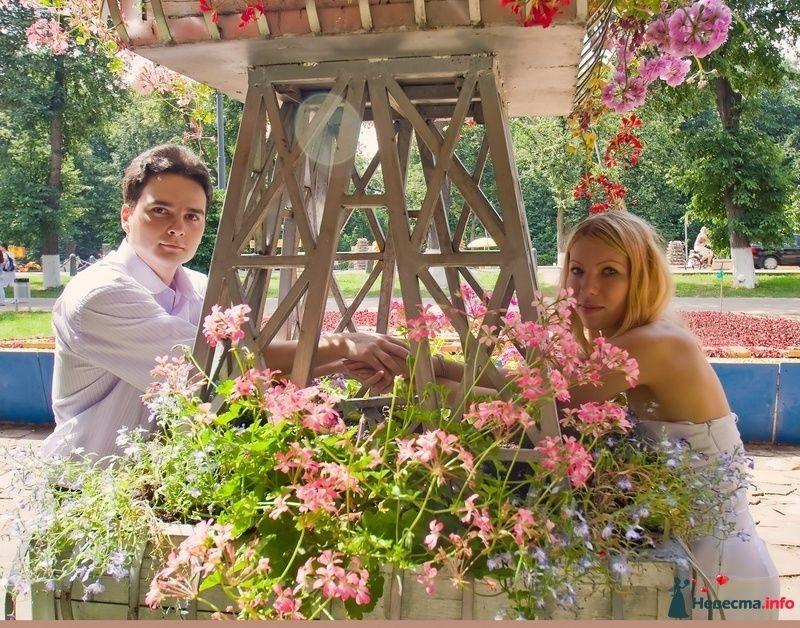 Фото 117948 в коллекции Елена+Андрей - Невеста01