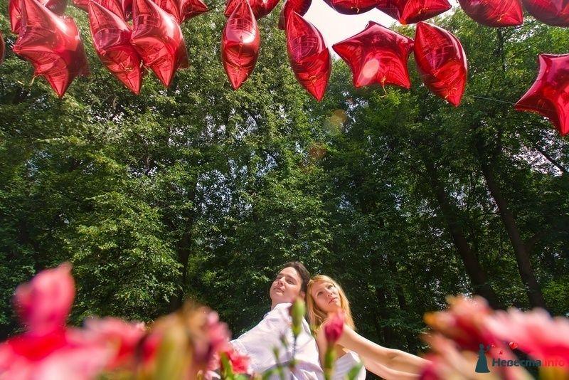 Фото 117974 в коллекции Елена+Андрей - Невеста01