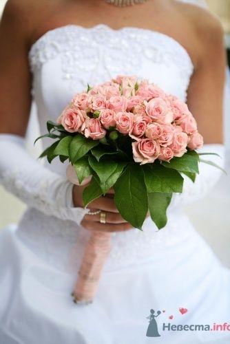 Свадебный фотограф - фото 544 Photo-story фотограф