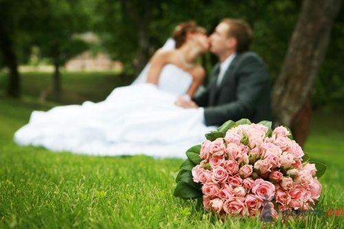 Свадебный фотограф - Александр
