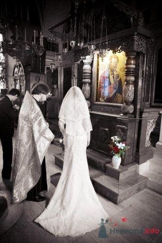 Свадебный фотограф - фото 10144 Photo-story фотограф
