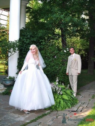 Фото 2634 в коллекции Свадьба