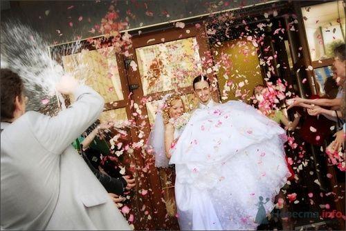 свадьба - фото 10970 Анжелика Саакова - фотограф