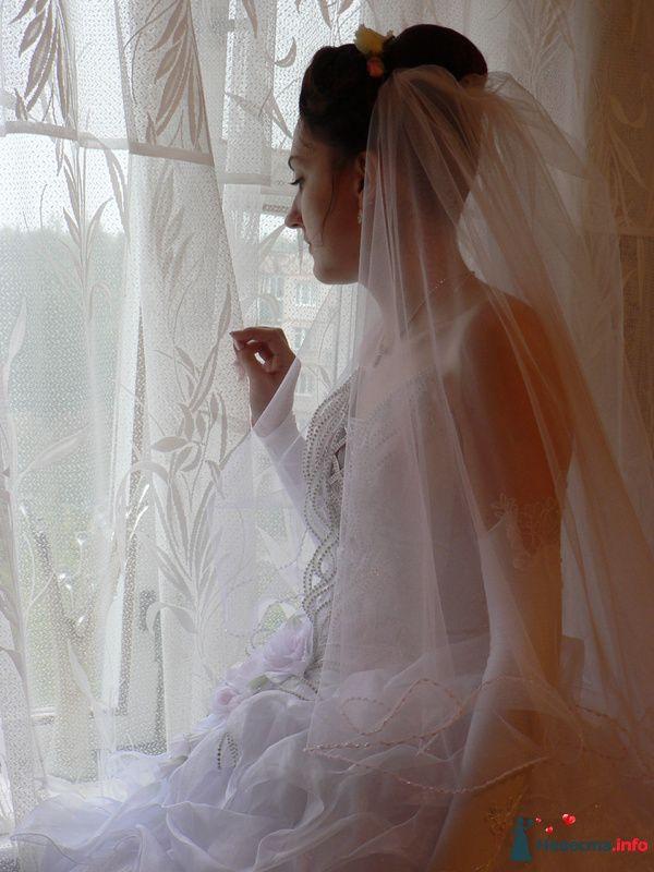 моя фоторабота, Лиза ожидание - фото 95531 Wamira