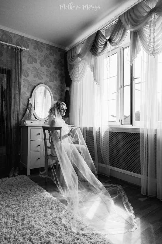 Фото 13452460 в коллекции Портфолио - Фотограф Мария Молькова