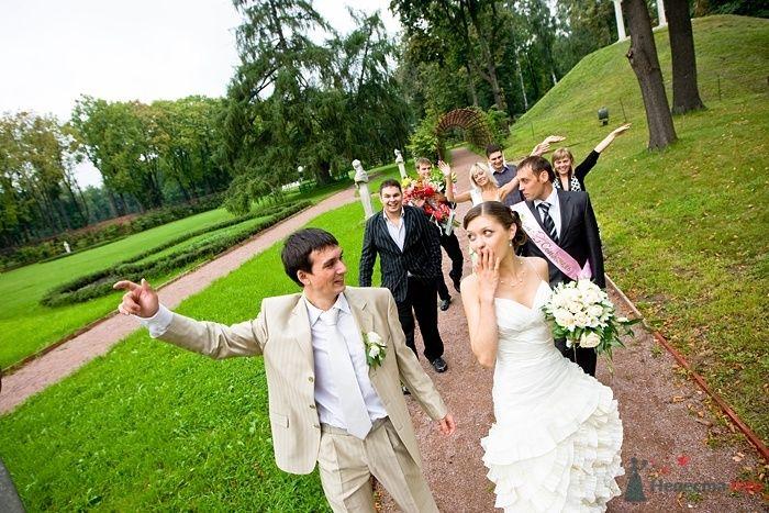 Фото 46623 в коллекции Подготовка к свадьбе