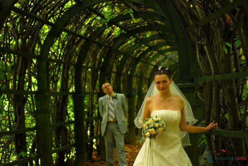 Жених и невеста стоят на фоне арок и зелени