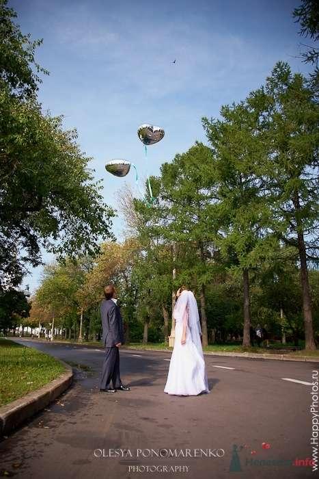 Фото 51181 в коллекции 12.09.09 - Невеста01