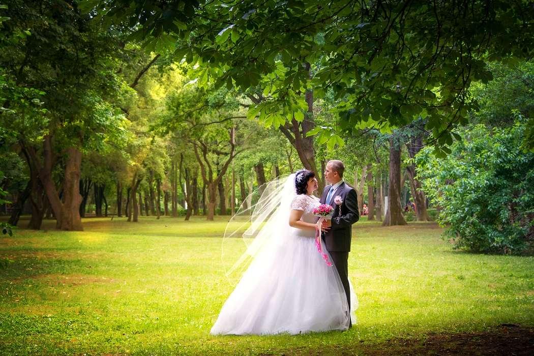 самое свадебные места для фото в краснодаре этой новости прекрасно