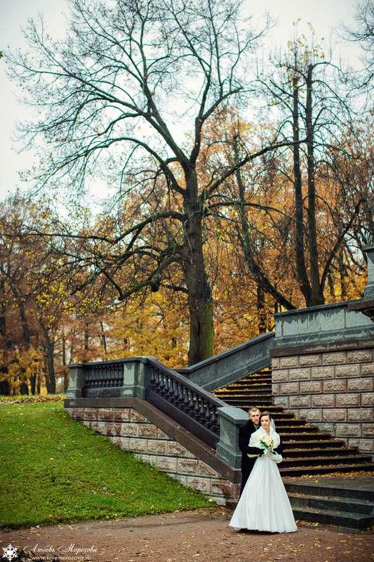 Фото 8558258 - Фотограф Любовь Морозова
