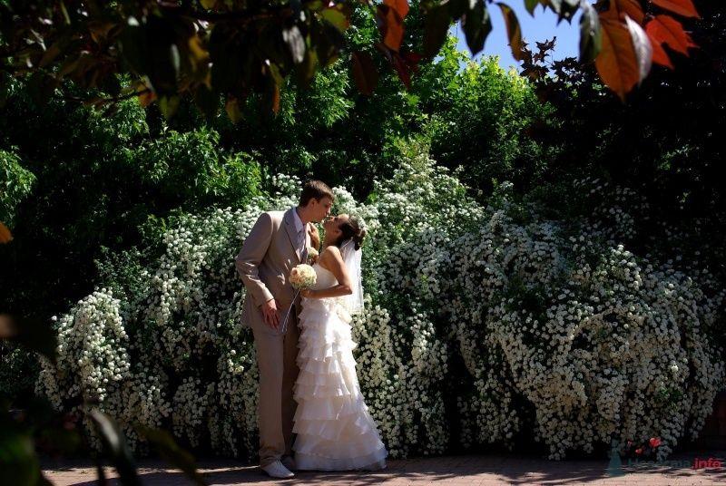 Жених и невеста, прислонившись друг к другу, стоят на фоне зелени - фото 23780 Fnu