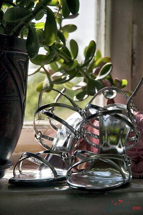 Фото 24011 в коллекции Фотографии от нашей мастерской - Мастерская Дениса Медникова - фотоуслуги