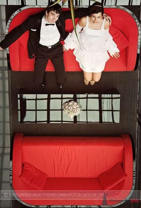 Фото 79438 в коллекции Фотографии со свадеб - Фотограф Андрей Поршнев