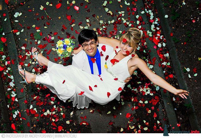 Фото 114625 в коллекции Фотографии со свадеб - Фотограф Андрей Поршнев