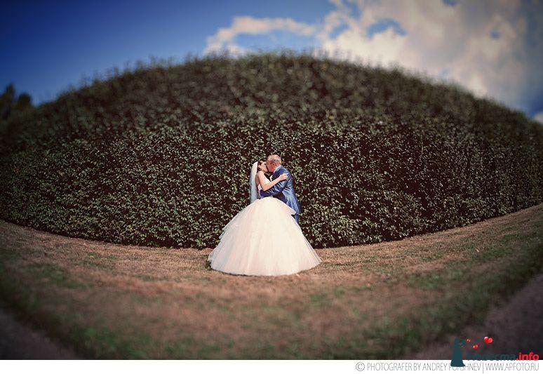 свадебный фотограф андрей поршнев - фото 122173 Фотограф Андрей Поршнев