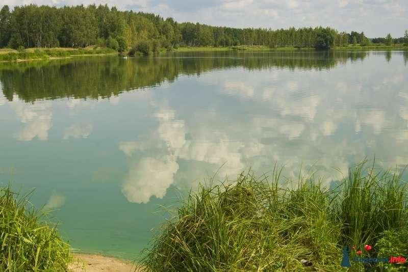 Фото 302231 в коллекции природа - Фотограф Алекс Сапожников