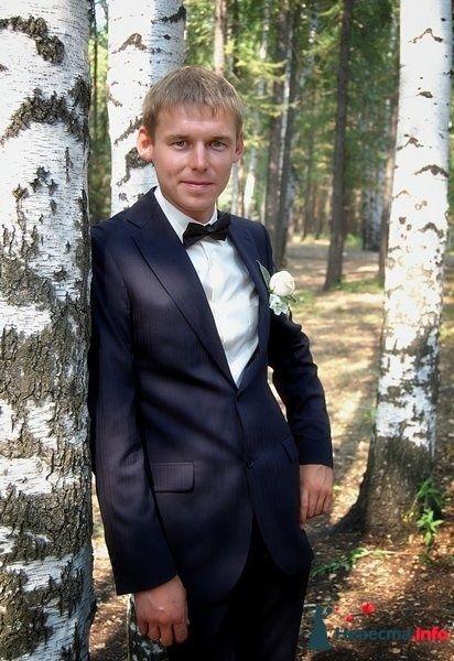 Фото 280750 в коллекции Мои фотографии - Еникеев Наиль-фотограф.