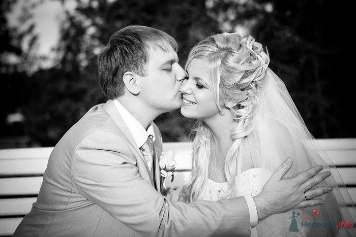 Жених целует невесту на скамейке в парке