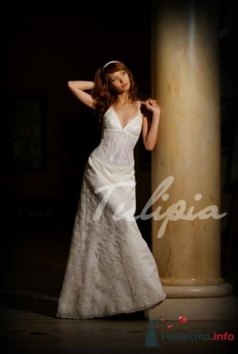 Фото 22812 в коллекции платья