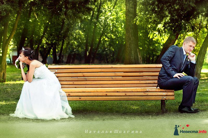 Фото 128760 в коллекции Мои фотографии - Фотограф Наталья Шпагина