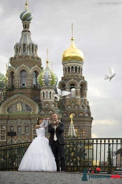 Фото 327230 в коллекции Свадьба - Михаил Пинченков - Профессиональный фотограф