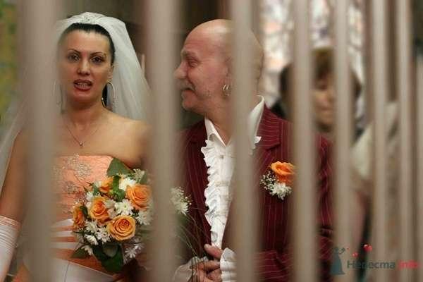 Оранжевая свадьба - фото 23663 Фотограф Ирина Бруй