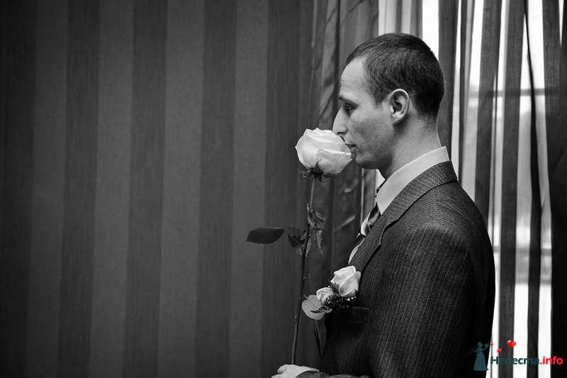 Фото 105207 в коллекции Счастливые свадьбы - Фотограф Ирина Бруй