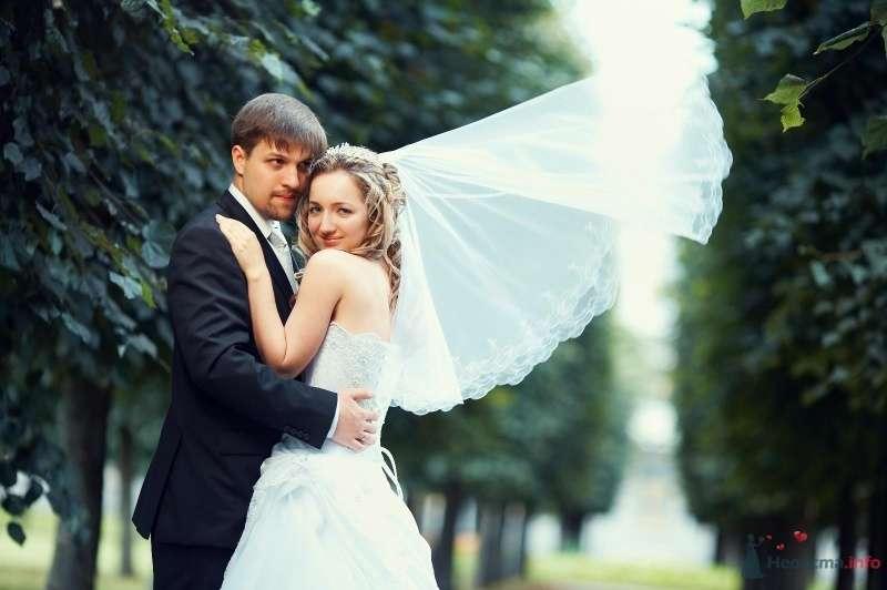Фото 62829 в коллекции Наша самая счастливая свадьба )) - Anastasiya