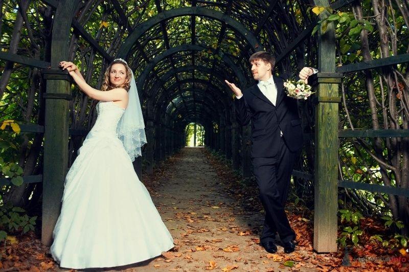 Фото 63014 в коллекции Наша самая счастливая свадьба )) - Anastasiya