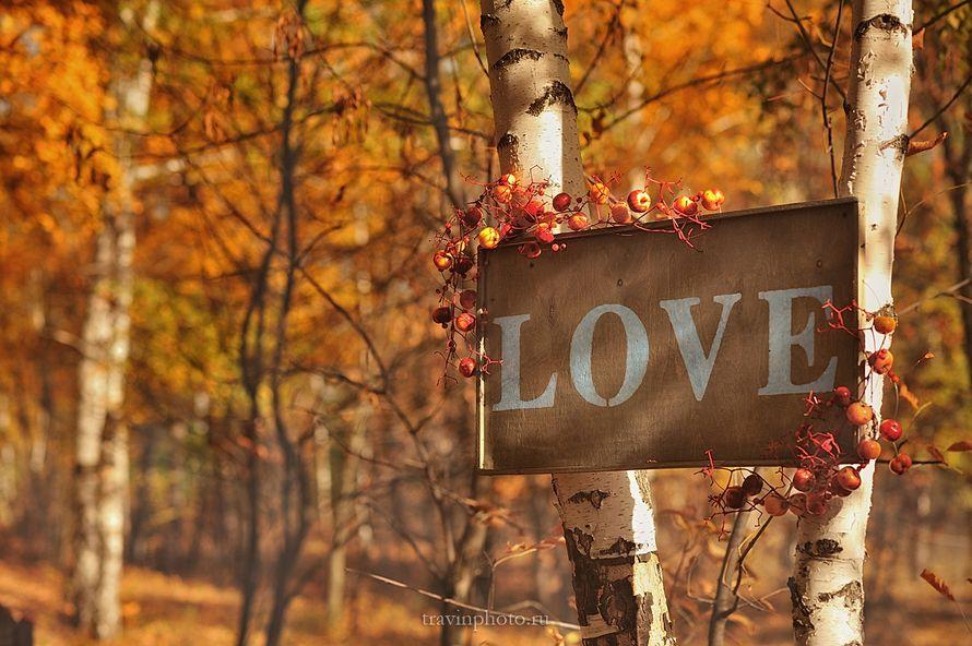 прогулка в осеннем лесу, красно-жёлтая гамма - фото 2610137 Фотограф Галина Травина